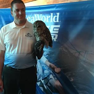 Chloe the Owl rescued from Florida